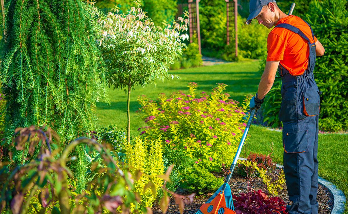 Pallenkvist Allervice - Trädgårdsarbete